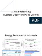 Directional Drilling Busines Oppurtunity Growth and FP
