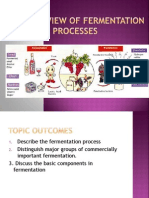 The Overview of Fermentation Processes