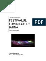 Festivalul Luminilor de Iarna