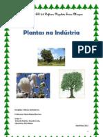 Plantas usadas na indústria- GRUPO 3 (1)