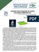 Frango Colonial Embrapa