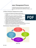 HESS Performance Management Process
