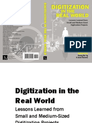 Digitization in the Real World: Lessons Learned From Small