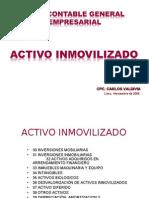 ActivoInmovilizado