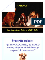 Alimentacion Canina y Felina.pdf