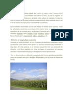 Agricultura y Degradacion de Suelos