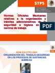 Norma Oficial Mexicana Nom-028-Stps-2004 Juny Jorge