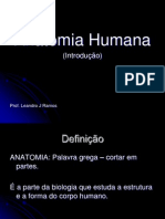Introdução Anatomia