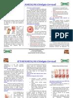 Trifoliar Cancer Cervical