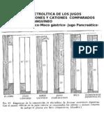 COMPOSICION ELECTROLÍTICA DE LOS JUGOS INTESTINALES