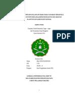 budidaya & penanggulangan hama pada tanaman semangka_ima khustafidhoh_2012