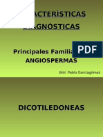 Diagnosis Familias