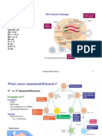 15hiv and Aids Ppt 4329