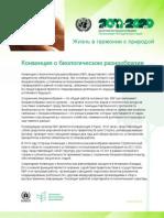 Undb Fact Sheets Ru Web