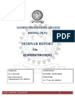 GIS Introduction & Basics Seminar Report