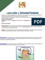 saludbucal-090923115012-phpapp02