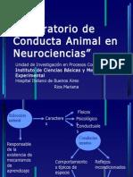Charla Lab Oratorio de Conducta Animal en Neurociencias