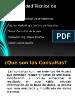 Consultas en Access Davidaguirre