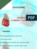 Anatomia Aparatului Cardio-Vascular 1