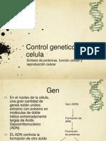 Capitulo+3+Sintesis+de+Proteinas