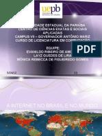 A Internet No Brasil e No Mundo