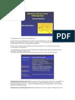 cefalos y penicilina