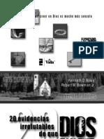 20 evidencias