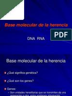 Modelos de Replicacion Del ADN