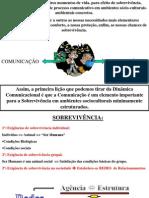 3. COMUNICAÇÃO E CULTURA ORGANIZACIONAL