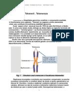 Telomerii si telomeraza
