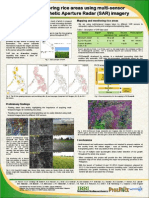 Mapping and monitoring rice areas using multi-sensor multi-temporal Synthetic Aperture Radar (SAR) imagery