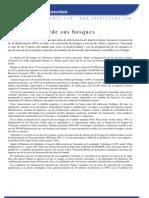Venezuela Pierde Sus Bosques