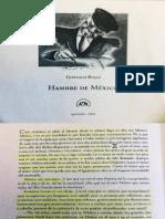 Gonzalo Rojas, Hambre de México