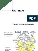 1er tema Bacterias