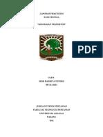 Laporan Praktikum Elektronika II