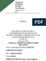 Www.referat.ro-bucsa Ghidare 1048