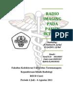 Radio Imaging Pada Pasien Ikterus