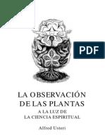 Usteri- Observacion de Las Plantas