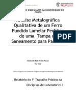 Relatorio-Análise Metalugráfica_Ferro Fundido