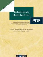 Estudios Del Derecho Civl -Marco Sepulevda