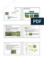 Aula Botânica classificação geral