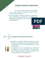 Reproducao Selectiva Em Plantas