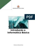 Introducao Informatica Basica