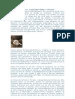 Teorias do Jornalismo - DEFINIDORES PRIMÉRIOS