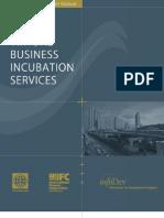VBIS Virtual Business Incubation Services Final Report