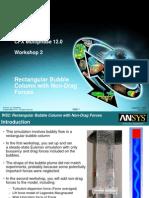 CFX Multi Phase 12.0 WS02 Non Drag Forces