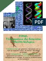 dnaegenetica