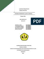 Laporan Tawas Kimia Industri Kel 10 M2M... (1)