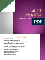 Audit Evidence Presentation