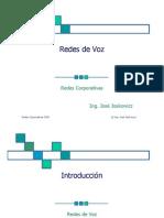 Presentacion Redes de Voz 2008 (Laminas)